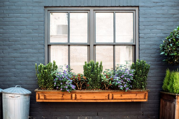 How to Choose the Best Window Style for Your Home