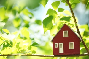 How to Make Your Home More Energy Efficient — Save the Planet and Your Wallet