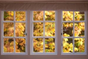 fall-window-view